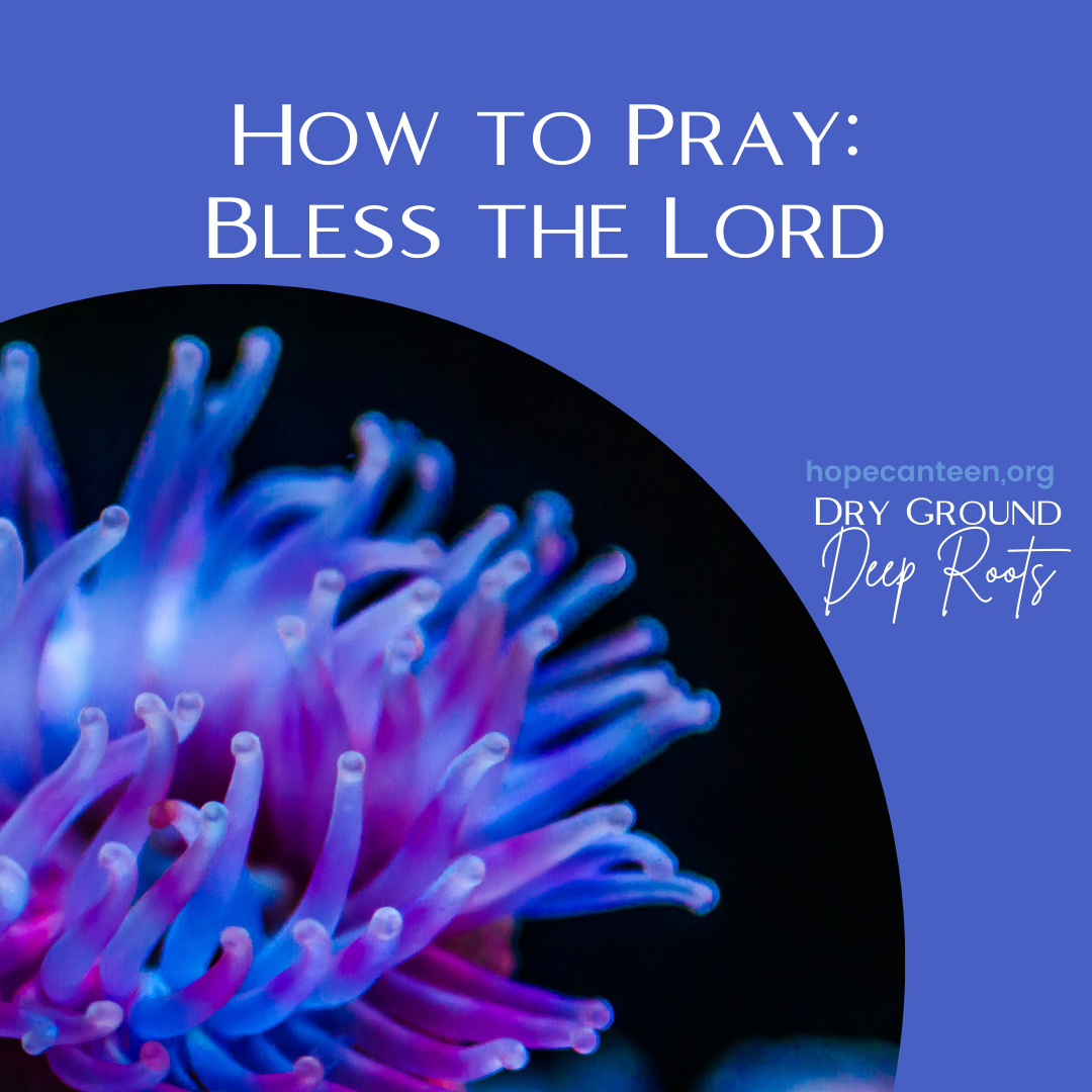 How to Pray: Bless the Lord