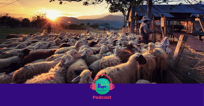 Episode 48: Jesus the Good Shepherd