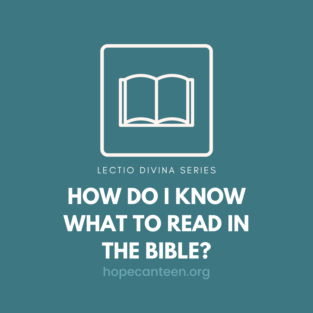 What to read in the Bible?