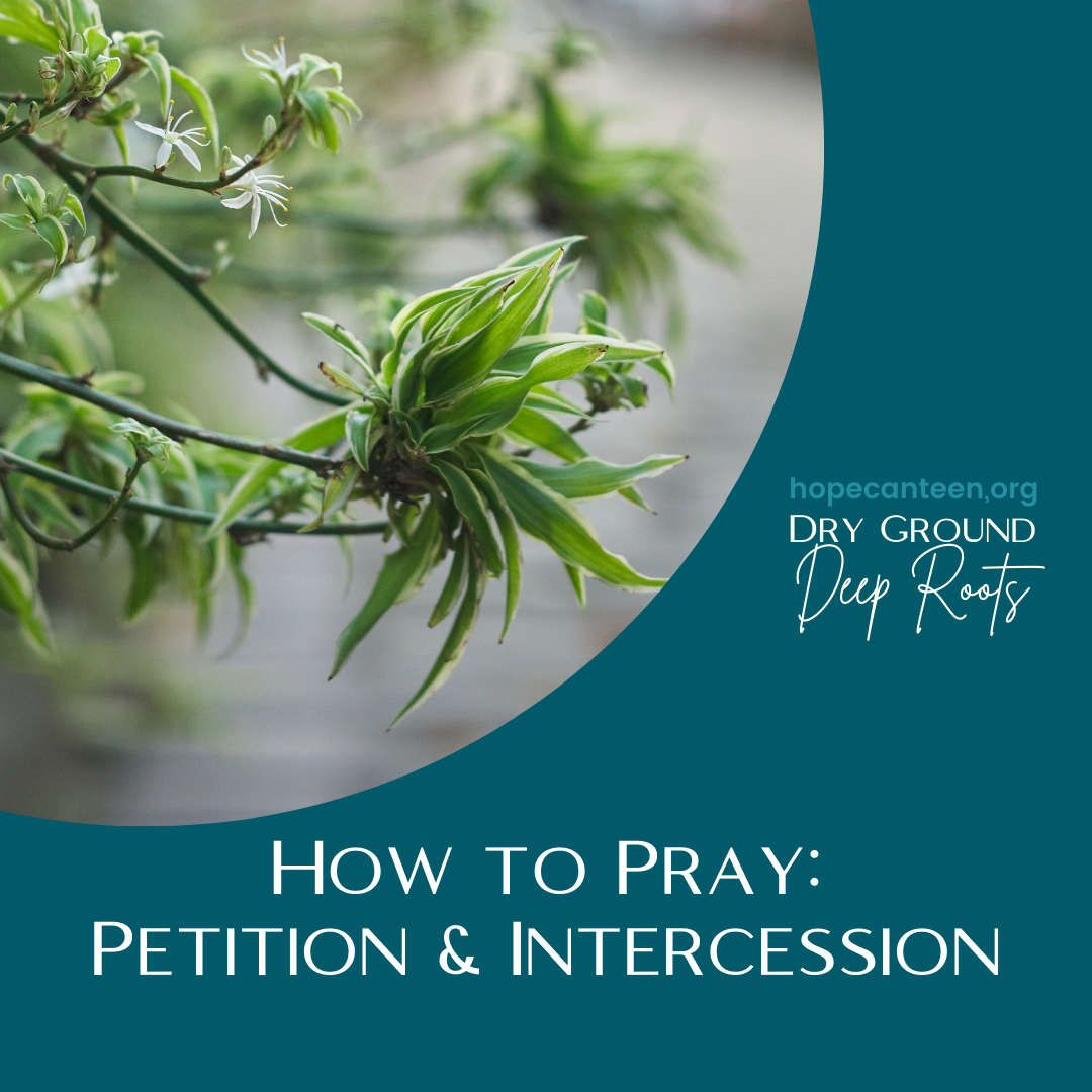 How to Pray: Petition and Intercession